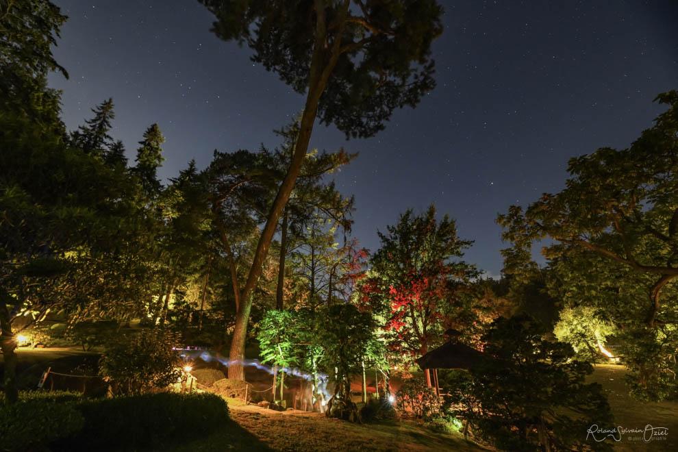 Visite nocturne du parc oriental de maulévrier