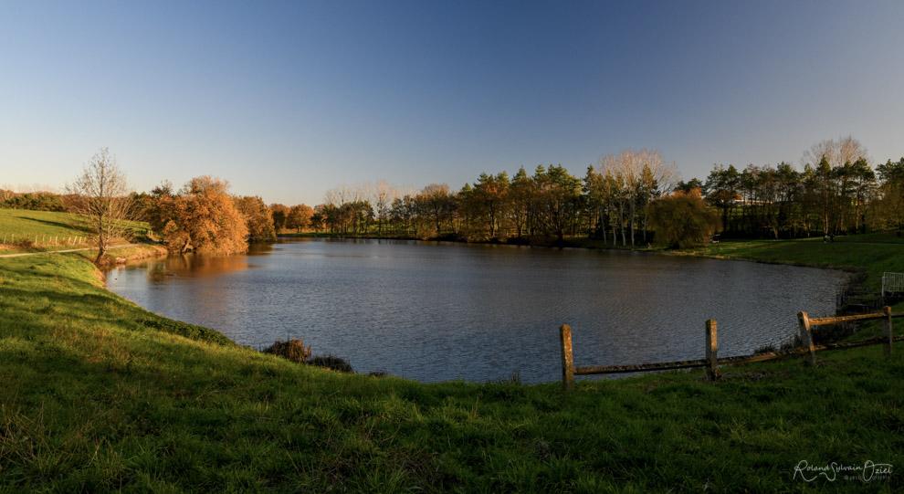 Gîtes pour se balader proches d'un étang en Vendée
