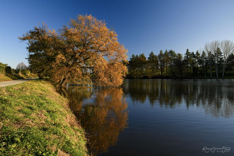 Gîtes proches d'un étang ou lac en Vendée