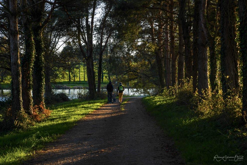 Gîtes proches d'un lac en Vendée