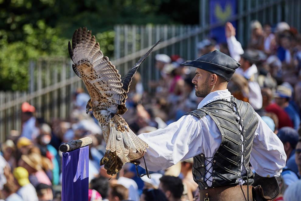 Le Bal des Oiseaux Fantôme spectacle du Puy du Fou