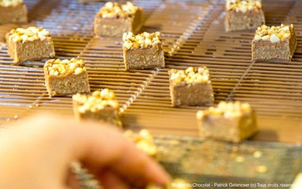 Gîtes proches du musèe du chocolat à la roche sur yon
