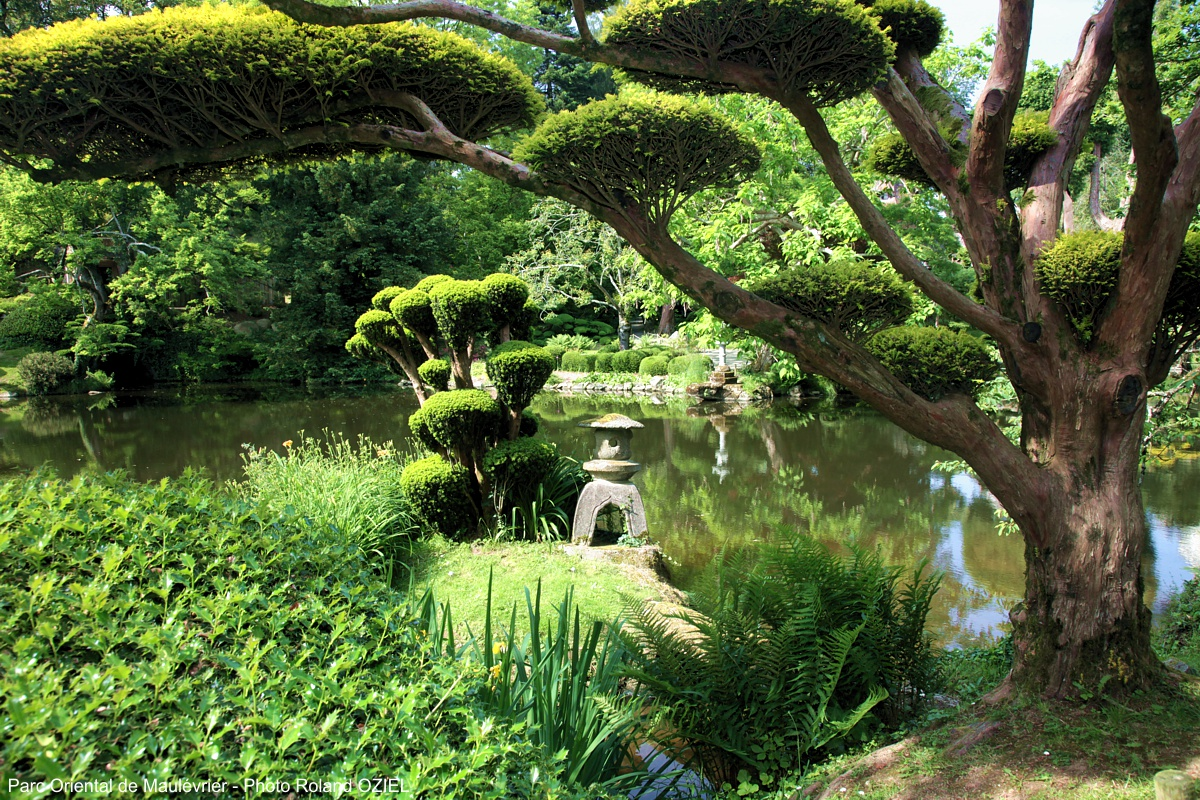Parc floral et oriental de maulévrier